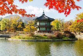Trẻ em có được miễn visa du lịch Hàn Quốc không?